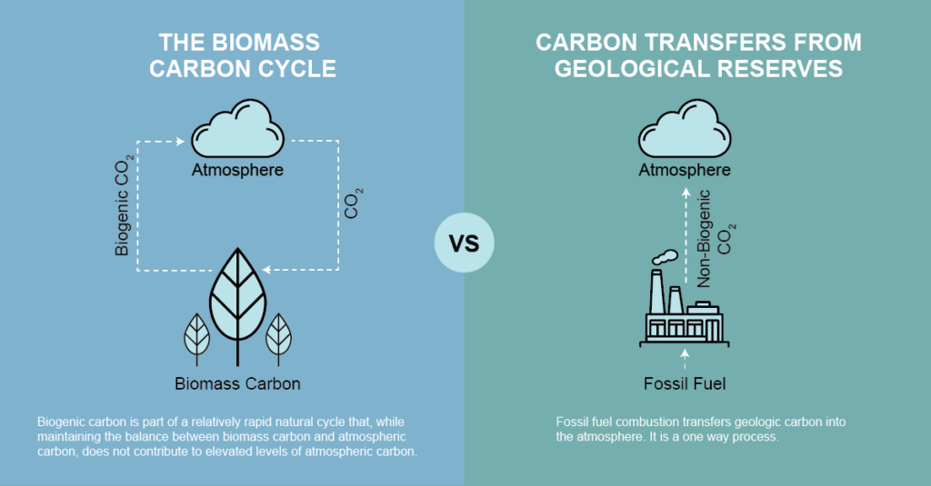 biogenic co2 infographic